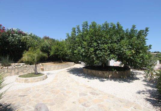 CD11203-Finca-in-Javea-Xabia-08