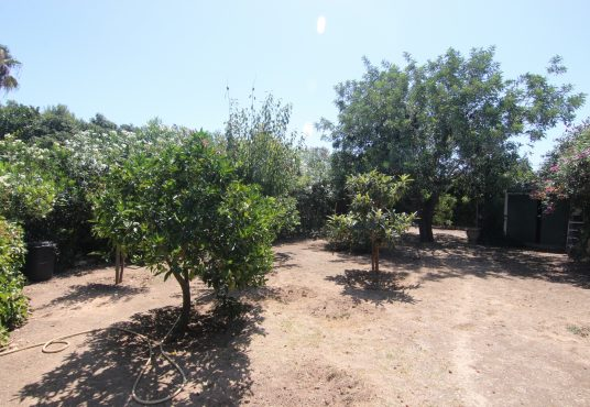 CD11203-Finca-in-Javea-Xabia-09